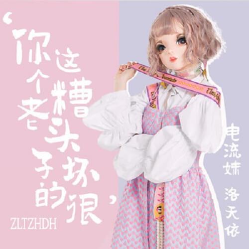 Ni Zhe Ge Zao Lao Tou Zi Huai De Hen 你这个糟老头子坏的很 You're A Terrible Old Man Lyrics 歌詞 With Pinyin