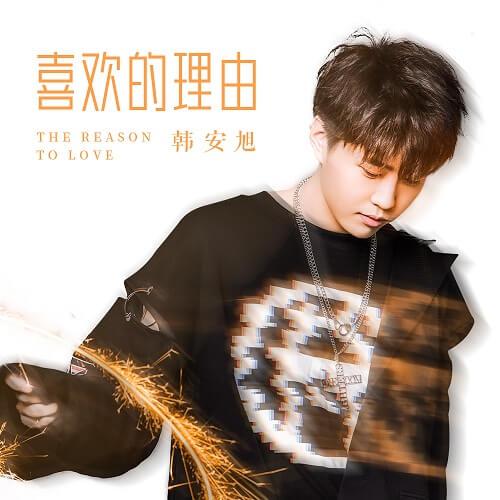 Xi Huan De Li You 喜欢的理由 Reasons To Like Lyrics 歌詞 With Pinyin