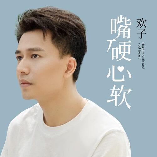 Zui Ying Xin Ruan 嘴硬心软 Mouth Shut Softhearted Lyrics 歌詞 With Pinyin