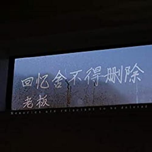 Hui Yi She Bu De Shan Chu 回忆舍不得删除 Memories Reluctant To Delete Lyrics 歌詞 With Pinyin