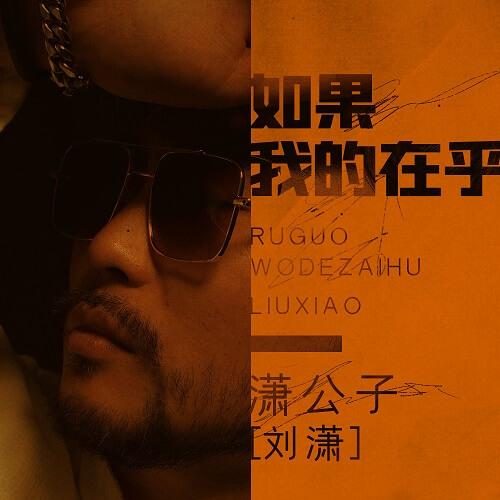 Ru Guo Wo De Zai Hu 如果我的在乎 If I Care Lyrics 歌詞 With Pinyin