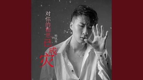 Dui Ni De Xiang Si Yi Cheng Zai 对你的相思已成灾 I've Missed You So Much Lyrics 歌詞 With Pinyin