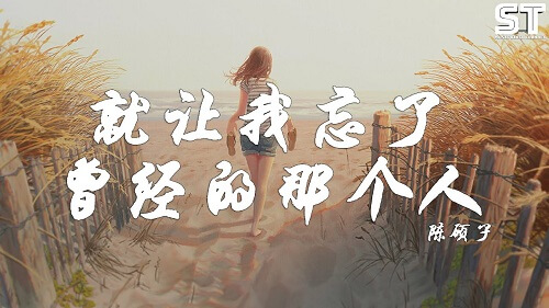 Jiu Rang Wo Wang Le Ceng Jing De Na Ge Ren 就让我忘了曾经的那个人 Let Me Forget Once That Person Lyrics 歌詞 With Pinyin