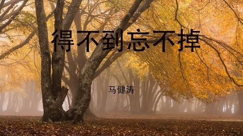 De Bu Dao Wang Bu Diao 得不到忘不掉 Never Forget Lyrics 歌詞 With Pinyin