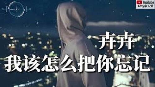 Wo Gai Zen Me Ba Ni Wang Ji 我该怎么把你忘记 How Can I Forget You Lyrics 歌詞 With Pinyin