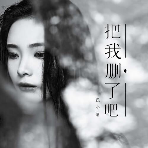 Ba Wo Shan Le Ba 把我删了吧 Let Me Delete That Lyrics 歌詞 With Pinyin