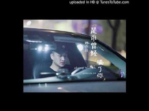 Shi Shui Ceng Jing Pian Le Ni 是谁曾经骗了你 Who Has Lied To You Lyrics 歌詞 With Pinyin