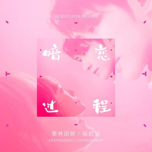 An Lian Guo Cheng 暗恋过程 Has A Crush On Process Lyrics 歌詞 With Pinyin