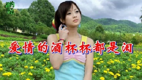 Ai Qing De Jiu Bei Bie Dou Shi Lei 爱情的酒杯杯都是泪 The Cup Of Love Is Full Of Tears Lyrics 歌詞 With Pinyin