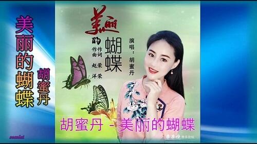 Mei Li De Hu Die 美丽的蝴蝶 Beautiful Butterfly Lyrics 歌詞 With Pinyin