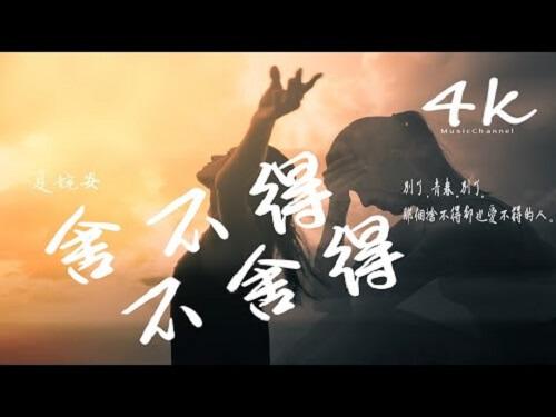 She Bu De Bu She De 舍不得不舍得 Can't Bear To Part With Lyrics 歌詞 With Pinyin