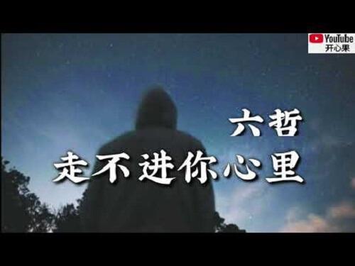 Zou Bu Jin Ni Xin Li 走不进你心里 Can't Go Into Your Heart Lyrics 歌詞 With Pinyin