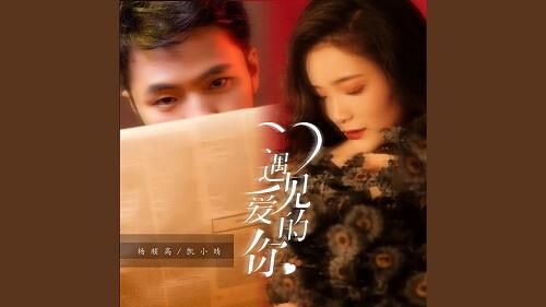 Yu Jian Ai De Ni 遇见爱的你 Meet The Love Of You Lyrics 歌詞 With Pinyin