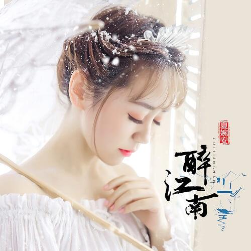 Zui Jiang Nan 醉江南 Drunk Jiangnan Lyrics 歌詞 With Pinyin