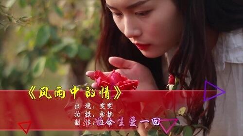 Feng Yu Zhong Di Qing 风雨中的情 Feeling In The Wind And Rain Lyrics 歌詞 With Pinyin