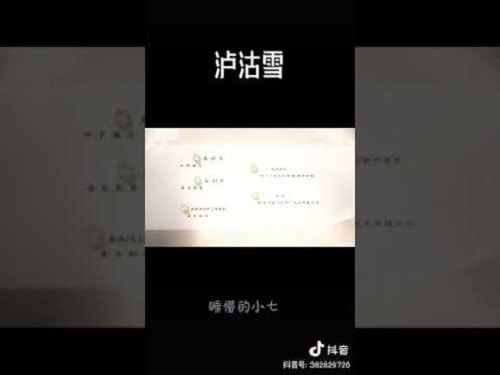 Lu Gu Xue 泸沽雪 LuGu Snow Lyrics 歌詞 With Pinyin