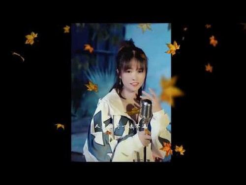Ji Mo Xin Wan 寂寞心湾 Lonely Heart Bay Lyrics 歌詞 With Pinyin