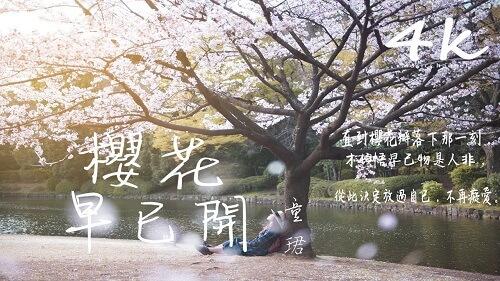 Ying Hua Zao Yi Kai 樱花早已开 The Cherry Blossoms Are Already In Bloom Lyrics 歌詞 With Pinyin