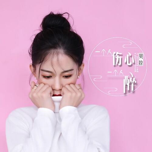 Yi Ge Ren Shang Xin Yi Ge Ren Zui 一个人伤心一个人醉 A Person Sad A Person Drunk Lyrics 歌詞 With Pinyin