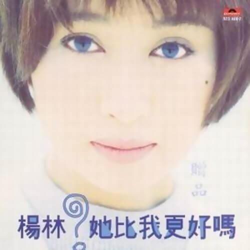 Bu Xiang Lian Ai Le 不想恋爱了 Don't Want To Be In Love Lyrics 歌詞 With Pinyin