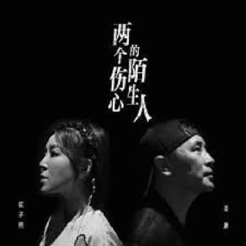 Liang Ge Shang Xin De Mo Sheng Ren 两个伤心的陌生人 Two Sad Strangers Lyrics 歌詞 With Pinyin