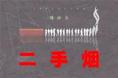Er Shou Yan 二手烟 Secondhand Smoke Lyrics 歌詞 With Pinyin