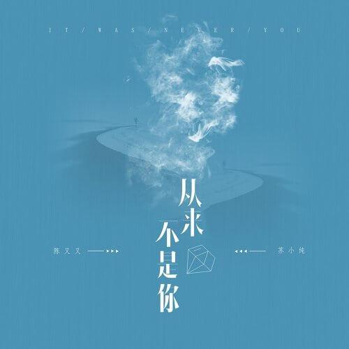 Cong Lai Bu Shi Ni 从来不是你 Never You Lyrics 歌詞 With Pinyin