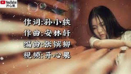 Ni Bu Shi Zhen Zheng De Ai Shang Wo 你不是真正的爱上我 You're Not Really In Love With Me Lyrics 歌詞 With Pinyin