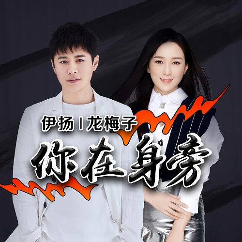 Ni Zai Shen Pang 你在身旁 You In The Side Lyrics 歌詞 With Pinyin