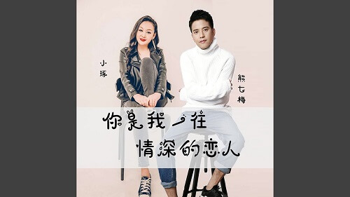 Ni Shi Wo Yi Wang Qing Shen De Lian Ren 你是我一往情深的恋人 You're My One And Only Love Lyrics 歌詞 With Pinyin