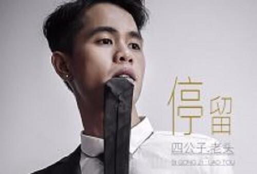 Ting Liu 停留 Stay Lyrics 歌詞 With Pinyin