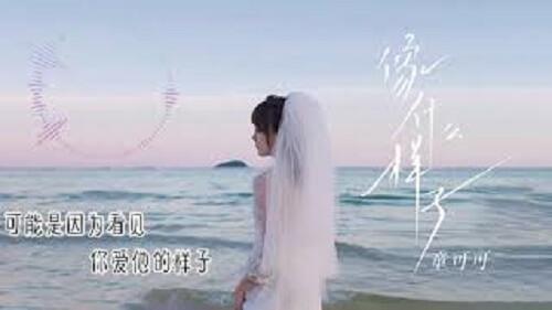 Xiang Shen Me Yang Zi 像什么样子 What Does It Look Like Lyrics 歌詞 With Pinyin