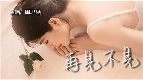 Zai Jian Bu Jian 再见不见 Bye See Lyrics 歌詞 With Pinyin