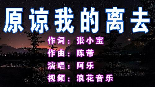Yuan Liang Wo De Li Qu 原谅我的离去 Forgive Me For Leaving Lyrics 歌詞 With Pinyin