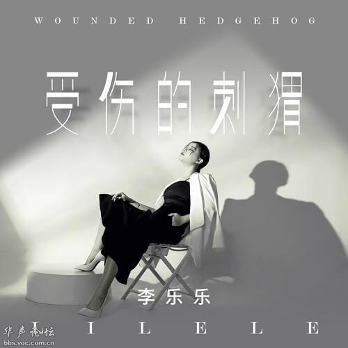 Shou Shang De Ci Wei 受伤的刺猬 Wounded Hedgehog Lyrics 歌詞 With Pinyin