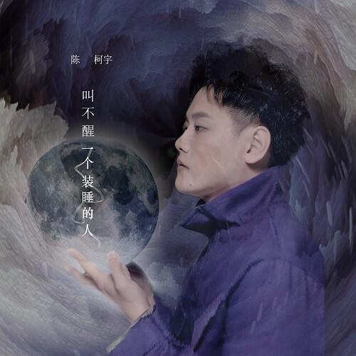 Jiao Bu Xing Yi Ge Zhuang Shui De Ren 叫不醒一个装睡的人 You Can't Wake A Fool Lyrics 歌詞 With Pinyin