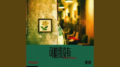Ke Xi Wo Mei You 可惜我没有 Unfortunately I Didn't Lyrics 歌詞 With Pinyin