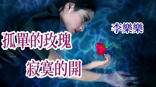 Gu Dan De Mei Gui Ji Mo De Kai 孤单的玫瑰寂寞的开 Lonely Rose Lonely Open Lyrics 歌詞 With Pinyin