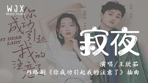 Ji Ye 寂夜 Lonely Night Lyrics 歌詞 With Pinyin