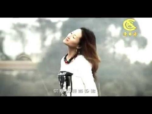 Dai Ni Qu Liu Lang 带你去流浪 Take You To Wander Lyrics 歌詞 With Pinyin