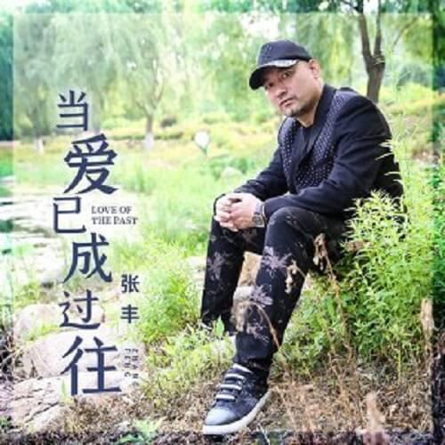 Dang Ai Yi Cheng Guo Wang 当爱已成过往 When Love Is Gone Lyrics 歌詞 With Pinyin