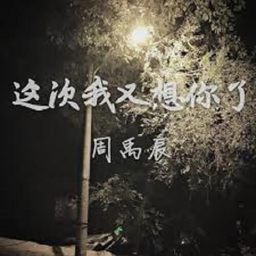 Wang Bu Dia Ni De Wen Rou 忘不掉你的温柔 Don't Forget Your Gentleness Lyrics 歌詞 With Pinyin