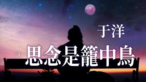Si Nian Shi Long Zhong Niao 思念是笼中鸟 Missing Is A Bird In Cage Lyrics 歌詞 With Pinyin