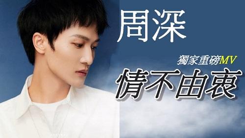 Qing Bu You Zhong 情不由衷 Love Is Not Sincere Lyrics 歌詞 With Pinyin
