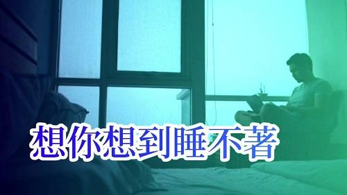Xiang Ni Xiang Dao Shui Bu Zhe 想你想到睡不着 You Think You Can't Sleep Lyrics 歌詞 With Pinyin