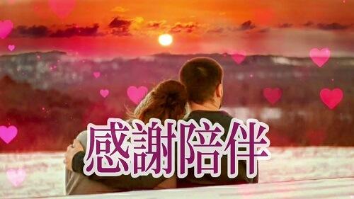 Gan Xie Pei Ban 感谢陪伴 Thank You To Accompany Lyrics 歌詞 With Pinyin