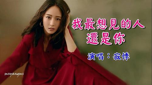 Wo Zui Xiang Jian De Ren Hai Shi Ni 我最想见的人还是你 The Person I Want To See Most Is Still You Lyrics 歌詞 With Pinyin