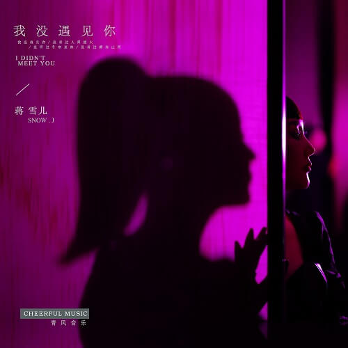 Wo Mei Yu Jian Ni 我没遇见你 I Didn't Meet You Lyrics 歌詞 With Pinyin