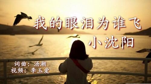 Wo De Yan Lei Wei Shui Fei 我的眼泪为谁飞 My Tears For Who Fly Lyrics 歌詞 With Pinyin