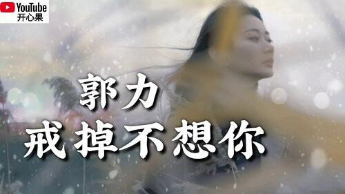 Jie Diao Bu Xiang Ni 戒掉不想你 I Don't Want You Lyrics 歌詞 With Pinyin